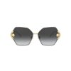 Dolce &Gabbana DG2253 1334/8G